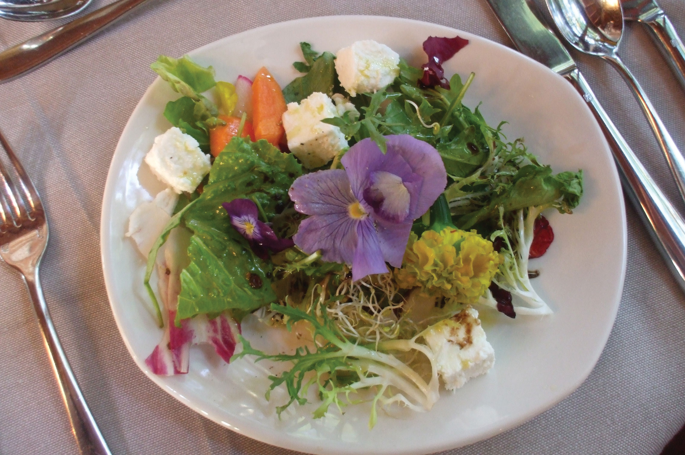 "Edible Flowers? Spring is in the ""Fare"""