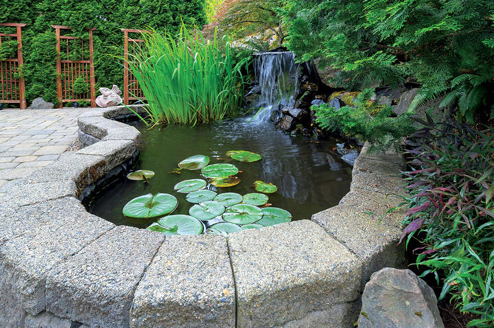 How a Water Feature Can Improve Your Quality of Life