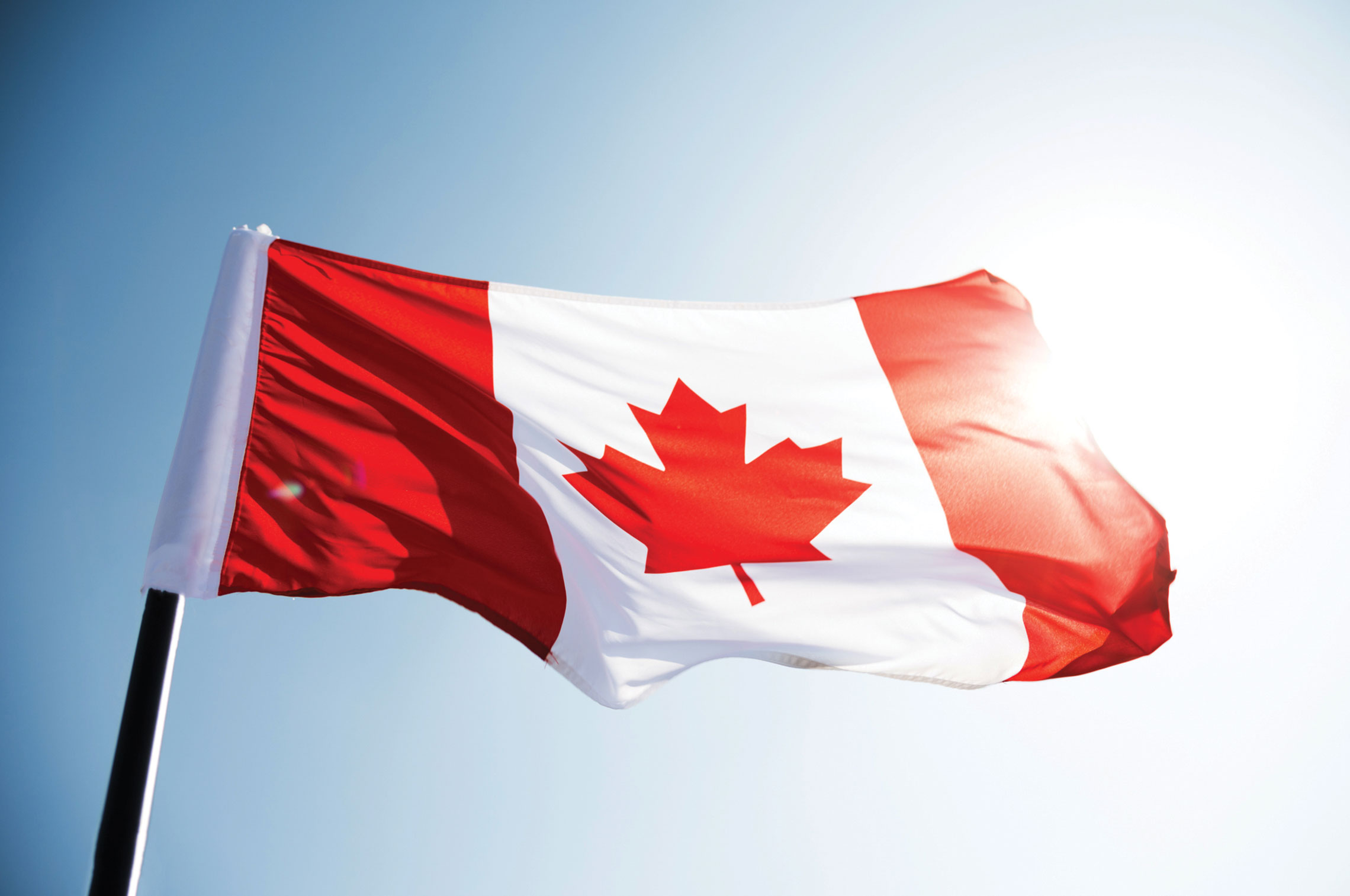 Image result for happy canada day blog